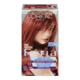 L'Oréal Paris Féria Multi-Faceted Shimmering Colour 77 Light Auburn 1 Application